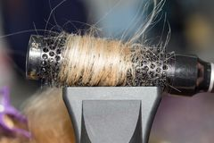 Hair styling in the salon Royalty Free Stock Photo