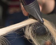 Hair styling in the salon Stock Images