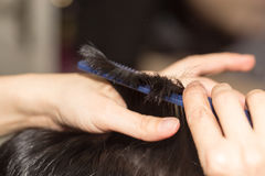 Hair styling in the salon Stock Photos