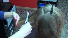 Hair stylist cut stock footage