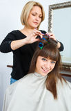 Hair stylist in work. Hair stylist putting rollers in woman hair Stock Photography