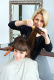 Hair stylist in work Stock Image