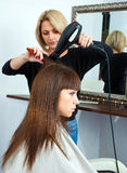 Hair stylist in work Stock Photo
