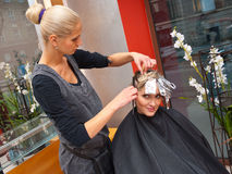 Hair stylist at work. Stylist coloring woman hair in hairdresser salon stock photo