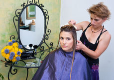 Hair stylist at work Stock Photography