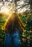 Hair in the sun. Field Stock Images