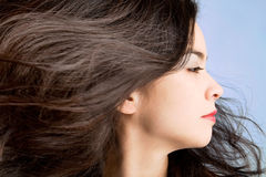 Hair in a Swirling Wind. Woman's hair are being blown away in a swirling wind stock images