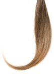 Hair tail. Female hair curl tail on white Stock Photography