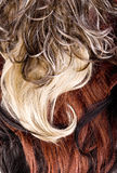 Hair texture Royalty Free Stock Photography