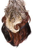 Hair texture Royalty Free Stock Photos