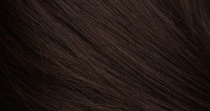 Hair texture Royalty Free Stock Images