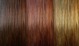 Free Hair Tones Royalty Free Stock Photos - 35305238