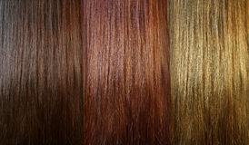Hair tones Royalty Free Stock Photos