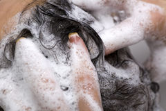 Hair Wash Royalty Free Stock Images
