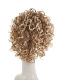 Hair wig over the mannequin head Royalty Free Stock Image
