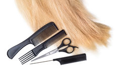 Free Hair With Scissors On Close Up Royalty Free Stock Photography - 62726707