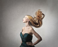 Hair Royalty Free Stock Image