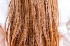 Hair is a woman who needs care. Texture of hair_ stock photos