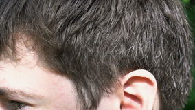 The hair of a young man, close up.  stock video footage