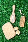 hairbrush травы Стоковая Фотография RF