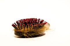 hairbrush Royalty-vrije Stock Afbeeldingen