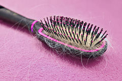 Hairbrush. Full of lost hair stock photos