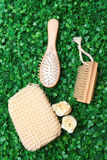 Hairbrush grass. Natural comb made of wood lying on the grass Royalty Free Stock Photography