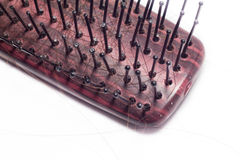Hairbrush with Hair Loss Royalty Free Stock Photography
