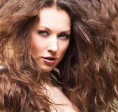 Haircare Stock Images