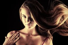 Haircare Royalty Free Stock Photo
