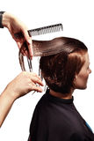 Haircut Stock Photography