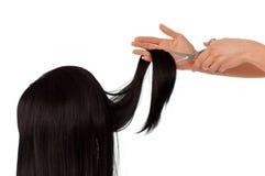 Haircut Stock Photos