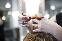 Haircut Royalty Free Stock Photography