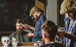 Haircut concept. Barber with hair clipper works on hairstyle for man with beard, barbershop background. Barber styling. Haircut concept. Barber with hair clipper royalty free stock photography