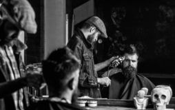 Haircut concept. Barber with hair clipper works on hairstyle for man with beard, barbershop background. Barber styling. Haircut concept. Barber with hair clipper royalty free stock images