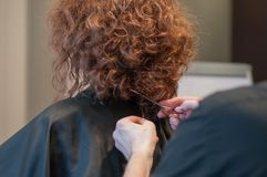 Haircut Curly Hair On A Girl Model With Dark Hair By A Master Hairdresser Royalty Free Stock Image
