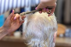 Haircut for the elderly. The process of cutting grandma`s hair in the Barber shop. The concept of age stock photos