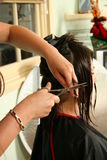 Haircut at home. Girl in profile with her hair wet and fastened in clips in the process of having her hair cut with scissors at home Royalty Free Stock Photo