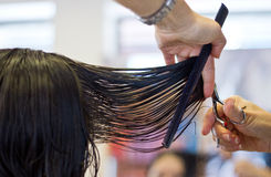Haircut. Woman getting haircut at hairdresser salon stock images
