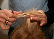 Haircutting. A woman cutting hair Stock Image