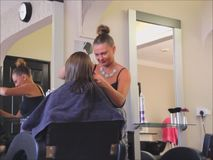 Haircutting hairdresser stock video