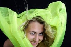 Hairdance Imagens de Stock