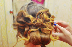 hairdo Royalty-vrije Stock Afbeeldingen