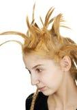 Hairdo extraño Imágenes de archivo libres de regalías