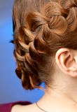 Hairdo with plaits. Modern hairdo with plaits side view Royalty Free Stock Image