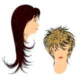 Hairdos femminili. Fotografie Stock