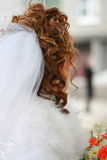 Hairdress of the bride Royalty Free Stock Photos