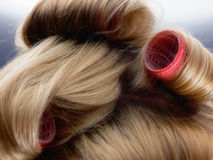 Hairdresser. Closeup of blond hair during hair dressing with curlers Royalty Free Stock Image