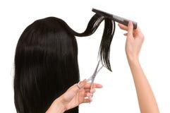 Free Hairdresser Royalty Free Stock Image - 11967866