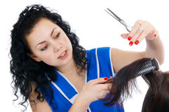 The hairdresser Royalty Free Stock Photos